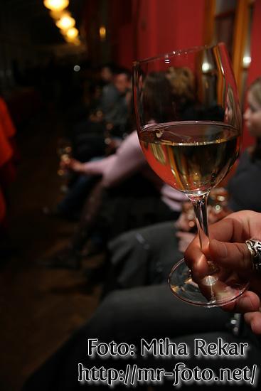 Slika   Degustacija vin v Celici (IMG 8754)